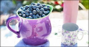 blueberries, summer, fruit